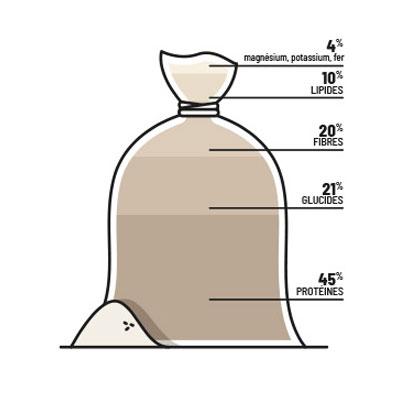 leplaisirdesplantes-bienfaits-chanvre-farine